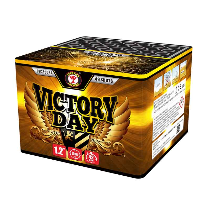 Victory Day 49 Shots