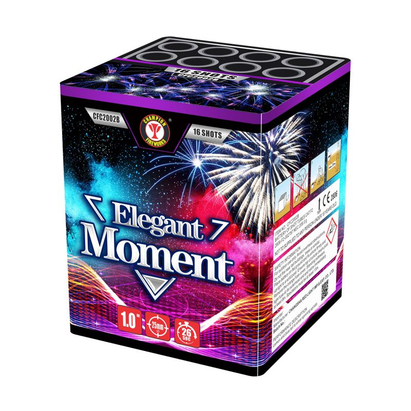 Elegant Moment 16 Shots