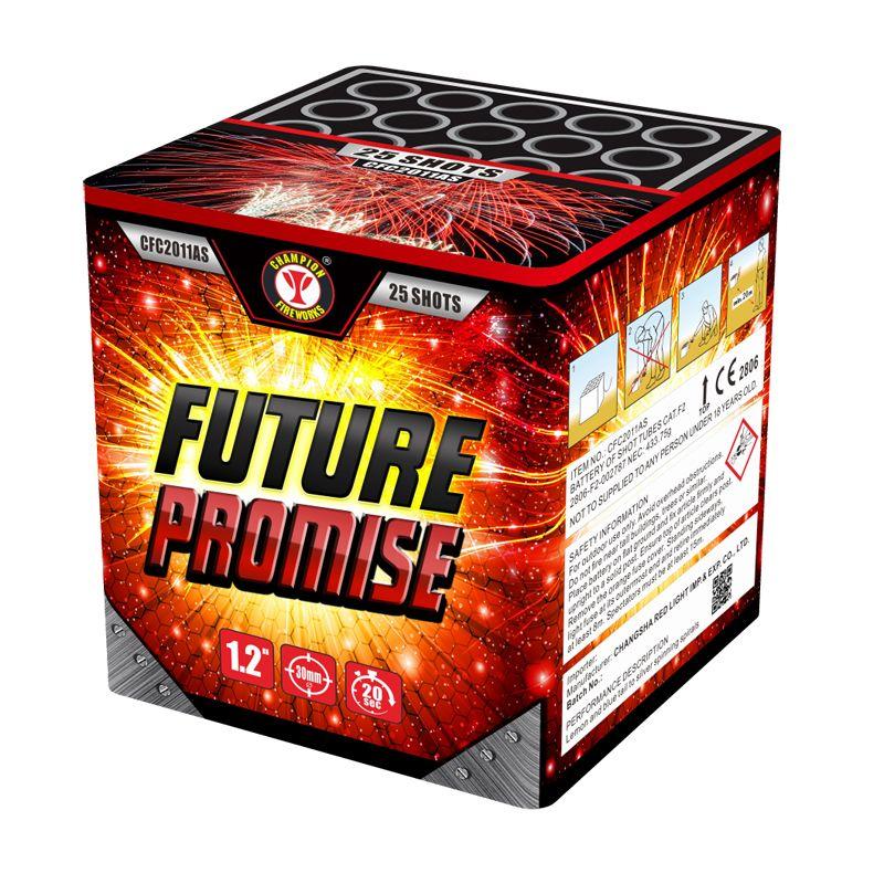 Future Promise 25 Shots