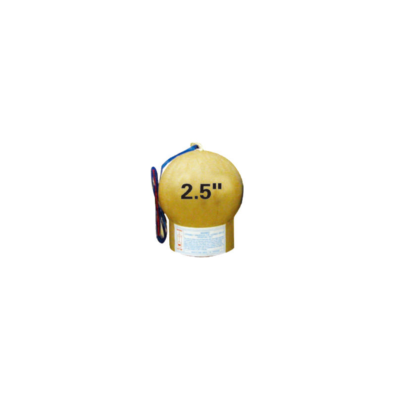 2.5 Inch Display Shell Fireworks